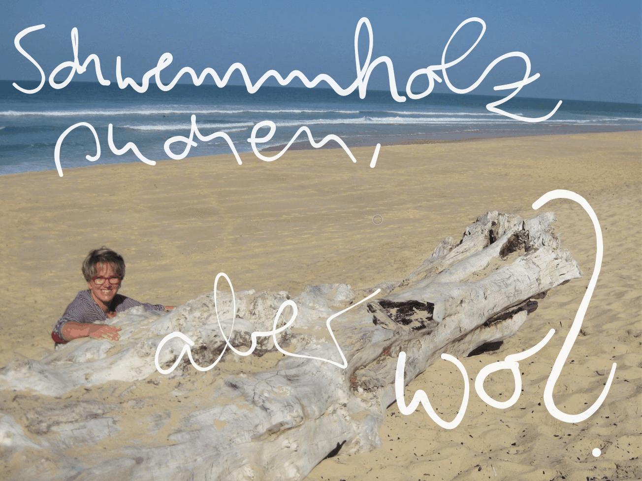Reise Tipps zum Drift Wood / Schwemmholz suchen
