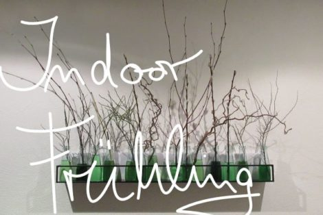 indoor Frühling