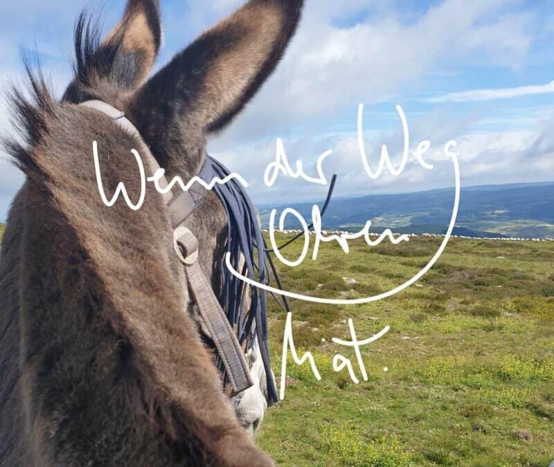 Esel Cajou …wenn der Weg Ohren hat